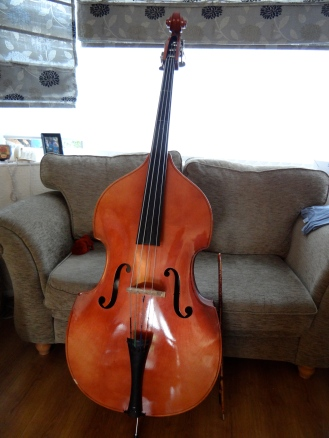 The Lovely String Bass from County Durham Youth Services