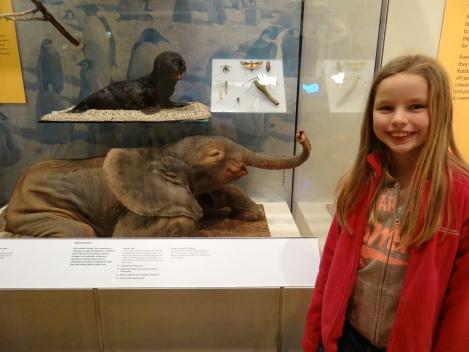 Meg meets a pint-sized pachyderm.