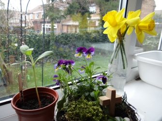 Meg's Easter Garden and Mother's Day Daffodils